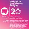 Rinse FM Podcast - Dugs & London Elektricity - Jungle Top 40
