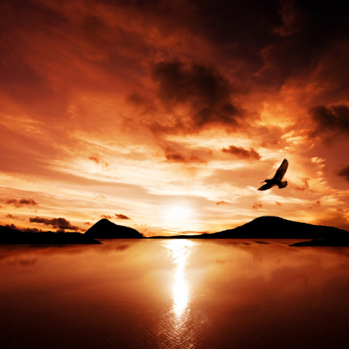 Close to the sun (river eagle mix featuring Beki Challoner)