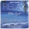 Blank & Jones - Survivor (Satin Jackets Dub Remix)