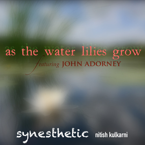 As the Water Lilies Grow (teaser)