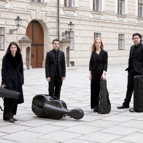 """Franz Schubert: """"Quartettsatz"""" in c minor - Allegro assai"""