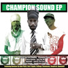 Champion Sound Spoonbill Remix
