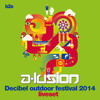 Download Decibel 2014 Liveset (Remember Area)- A-lusion Mp3