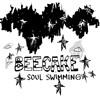 Beecake - Broken Songs
