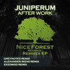 Juniperum - After Work (Greynotes Remix) mp3