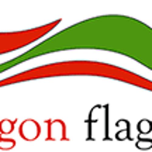 Jo Ashburner of Red Dragon Flagmakers BBC Wales NATO Summit-2014-09-01
