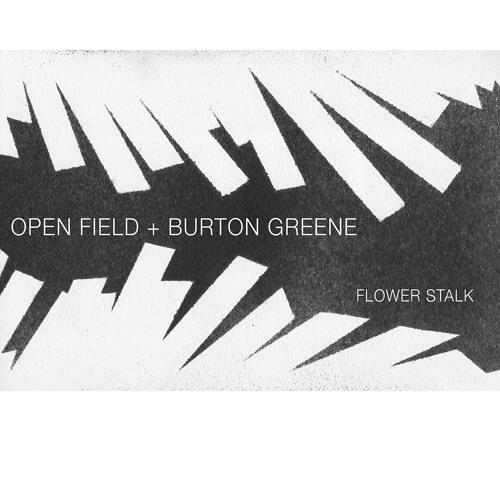 Open Field + Burton Greene - Rising Intensity (for Alan Silva)
