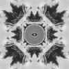 Flume -  Insane ft. Moon Holiday (Sebastian Carter Edition)