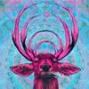 Download Chela - Romanticise (Gold Fields Remix) Mp3