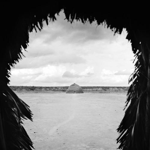 Amazônia Mundi - Guardiões da Floresta/Guardians of the Forest