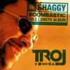 Shaggy Mr. Boombastic (troj instrumental) (karaoke)