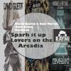 Dave Silcox X David Guetta & Sam Martin X Hardwell - Spark It Up Lovers On The Arcadia(RAYMI MASHUP)