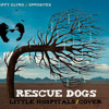 Little Hospitals - Biffy Clyro Instrumental Cover By Rescue Dogs