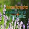 Wellness Music® Micro Audio Libro Música Para El Descanso : Mario Bressanutti