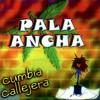 DE REGRESO AL PENAL - PALA ANCHA (Demo) DJ ANGEL AVEL Portada del disco