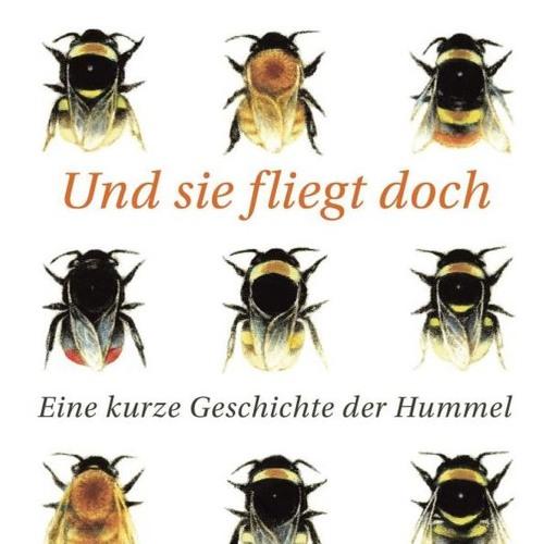 """""""Und sie fliegt doch: Eine kurze Geschichte der Hummel"""" - Dave Goulson"""