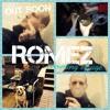 ROMEZ (GET IT IN).MP3