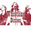MEDLEY: Takin' Pills- Pistol Annies Redneck Woman- Gretchen Wilson