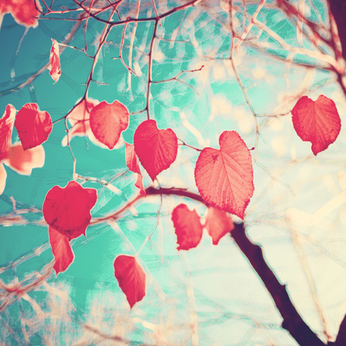 Autumn (when I fell for you)