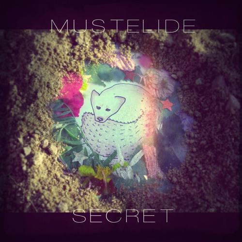 Mustelide - Secret LP (2014)