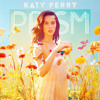 Katy Perry - Full Prism Album Filtered Acapellas [Sample]