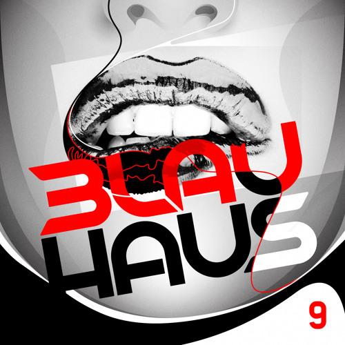 3LAU HAUS #9 (NYE 2013)