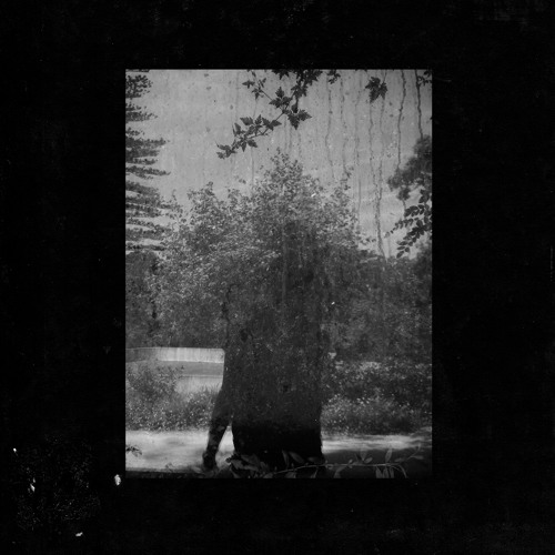 grouper 'call across rooms'