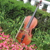 Ravel's Bolero - Flute & Cello Duo - Jaclyn Duncan Music
