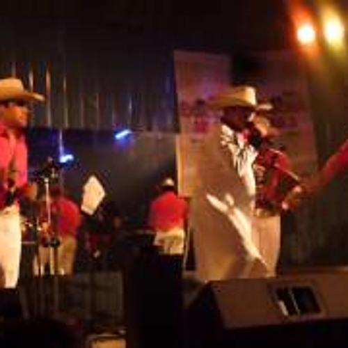 """Megamix Los Machos de la Cumbia """"Dj Luxinger in The Mix"""""""