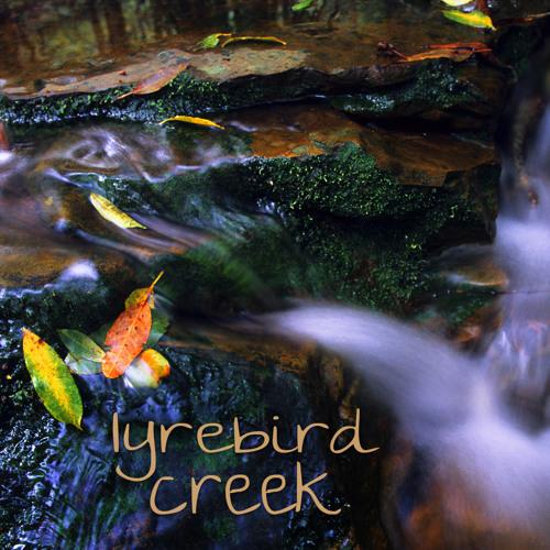 Lyrebird Creek (Dharug NP, Australia) - Album Sample