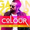 Gagan Kokri - Colour (Remix By Shevy)
