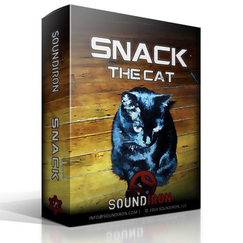 Soundiron Snack