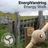 Energy Walk - English5