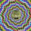 Let The Crazy Dada Loose (Prod. by PJ Sleezy)