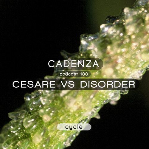 Cadenza Podcast | 133 - Cesare Vs Disorder (Cycle)