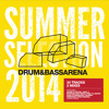 Drum And Bass Summer Arena 2014