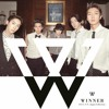 Different - WINNER ( Ver.Japan Collection)