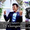 What The Fark (Amit Shani Ki List) - Dj Gangesh {unmastered}