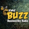 The Buzz - BuzzWorthy Radio - Kassie DePaiva of