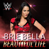 WWE - Brie Bella Theme Song - Beautiful Life By CFO$
