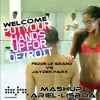 Fedde Le Grand Vs Jayden Parx  - Welcome Put Your Hands Up   (MASH - UP DJAriel - Lisboa)...