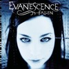 Download •bring me to life•evanescence• Mp3