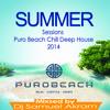 VA - Summer Sessions Puro Beach Chill Deep House 2014  موسيقه الديب هاوس