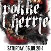 Critical Storm @Pokke Herrie 06.09.14