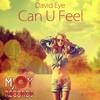 David Eye - Can You Feel (Disco Mike Private Edit)