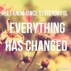 Everything has Changed -Taylor Swift ft Ed Sheeran (Cover)