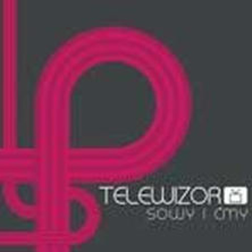 PLYNE, GINE/Luiza&band Telewizor, album SOWY I CMY(OWLS & MONTHS) 2005/electro-pop from film 'Magda M'