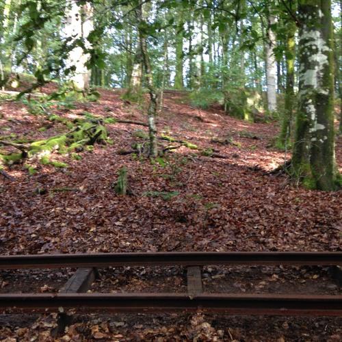 Rails For Ragnhild