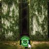 Geek Charisma Trailer Talk The Maze Runner