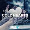 Project 46 - Cold Hearts (David Bulla & Michele Fasciano Remix)